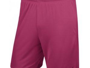Nike Park II Junior 725988-616 football shorts